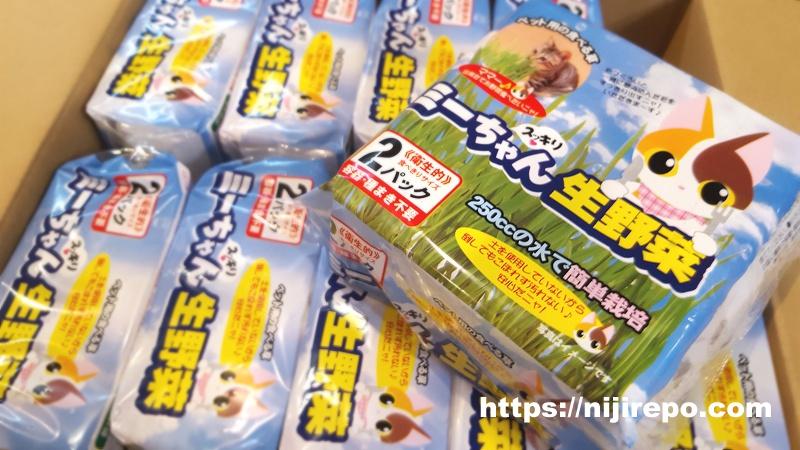 ミーちゃんスッキリ生野菜 猫草